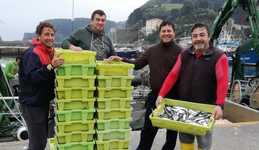 Arrantzaleak sardinekin