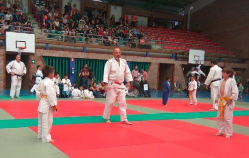 Judo borrokaldi bat. Argazkia: Artibai Judo Taldea